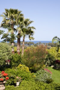 3/66 The colourful Mediterranean gardens with the sea beyond.