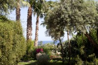 51/66 The beautiful garden has an extraordinary variety of Mediterranean flowers and plants.