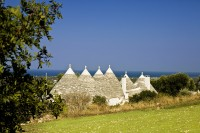 The trulli are surrounded by beautifully-tended gardens and lawns.