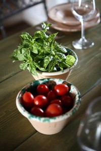 Basil and tomatoes, fresh and fragrant.