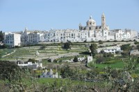 Beautiful Locorotondo is just a few km from Trullo Selva.