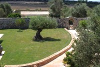 The courtyard seen from the roof of the Masseria.