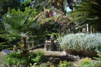 The garden features a wide array of Mediterranean plants, shrubs and trees.