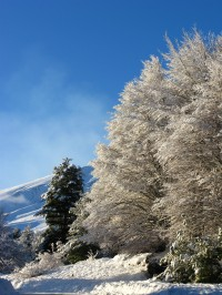 A snow-bound scene on Mount Etna.