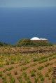 11/17 A typical scene and view on Pantelleria.