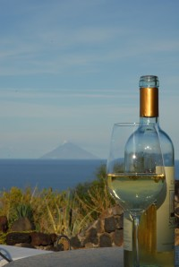 A bottle of Salina's Moscato with a view of Stromboli.
