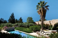 The pool and Arabic garden featuring palms, olive and pomegrantae trees.