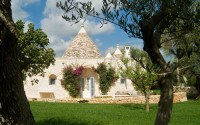 The front door of the main trullo seen from the olive tree-strewn gardens.